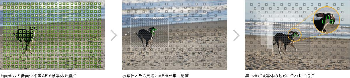 y_a6300_AF_tracking