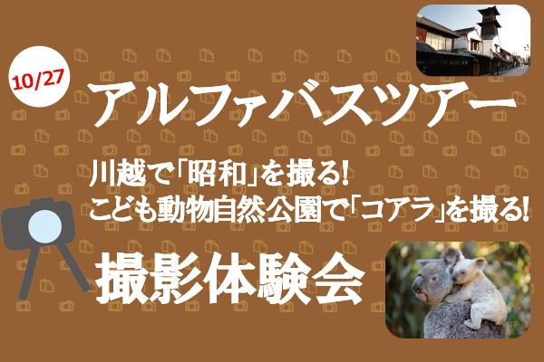 【10/27開催】コアラと川越の街並みを撮る!α(アルファ)撮影会バスツアー