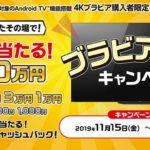 ブラビア・ロトキャンペーン テレビを買ったその場で当たる!?最大10万円のキャッシュバックキャンペーン!【ハズレなし】