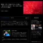 【α universe】中止になってしまったセミナー内容紹介 並木隆氏による「CP+で届けたかった思い」